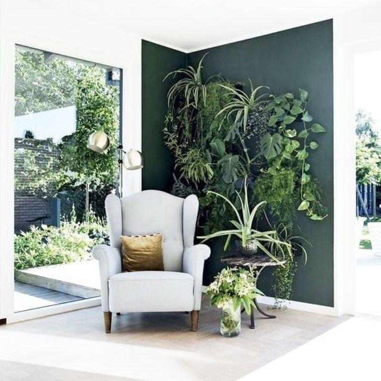 Picture of Indoor Gardening Tips for Beginners