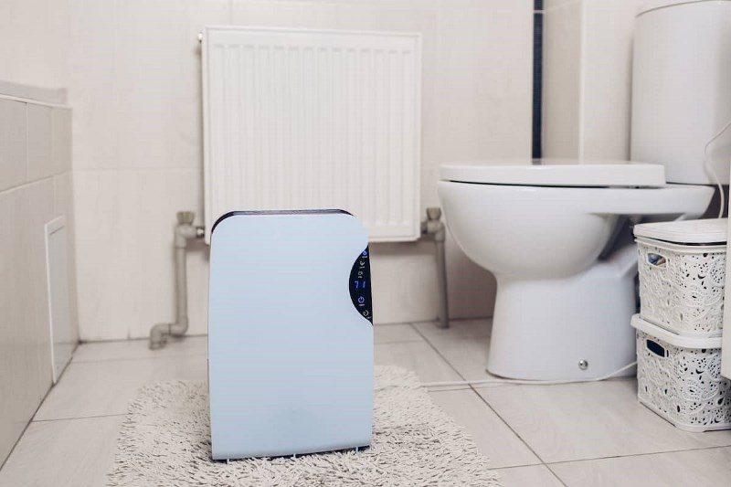 Picture of How to Prevent Mold in Bathroom